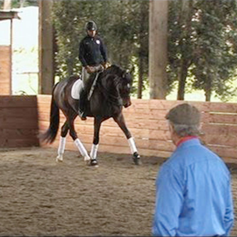 Monty Roberts Online University lesson - Mindful Dressage with Steffen Peters